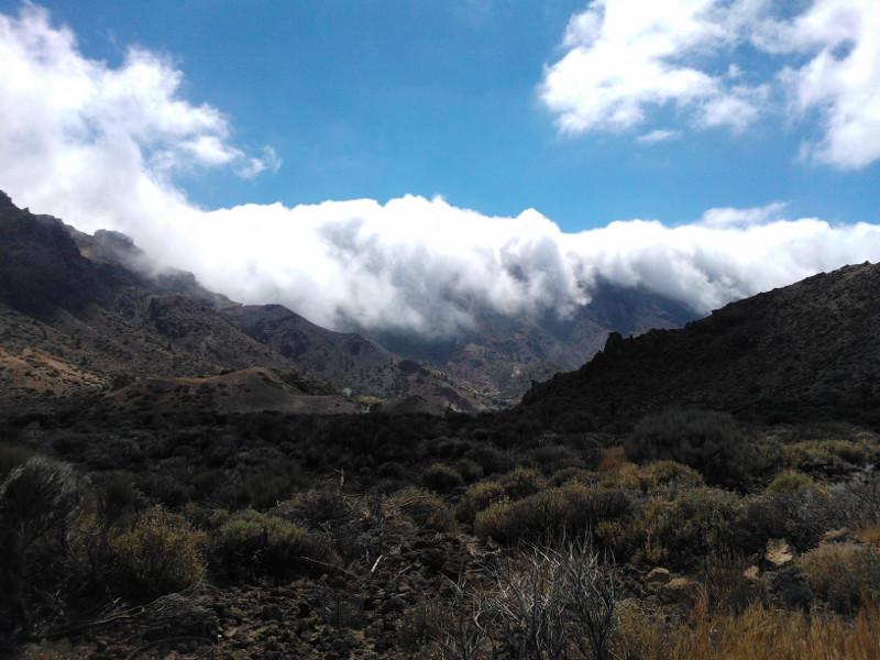 Tenerife cesta k sopce